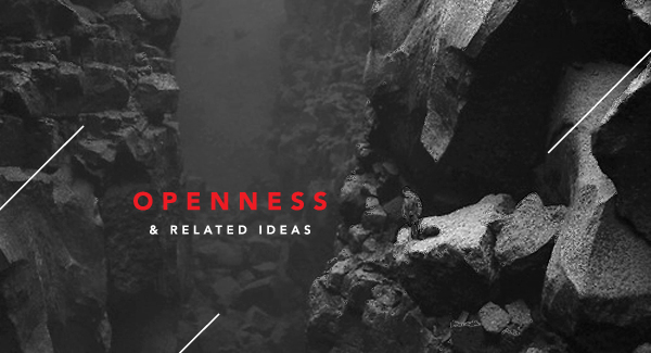 On openness and related ideas